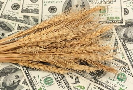 The October USDA report wheat has fallen off the quotations in the USA