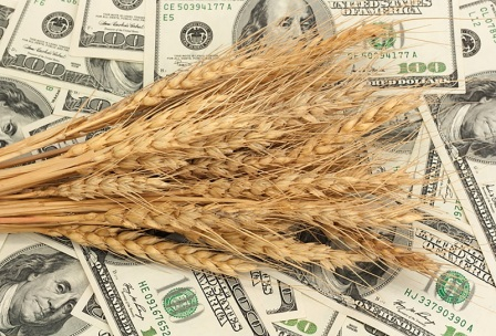 The price of wheat falling under the pressure of low demand