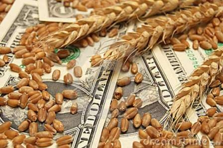 Wheat prices tumbled after the corn market