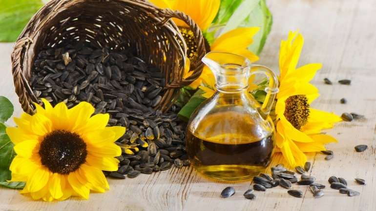 Prices for soy and palm oil are rising, sunflower remain the same