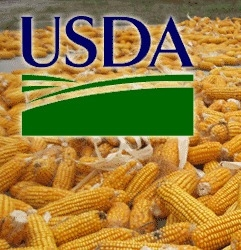 The USDA report collapse of corn prices by 7%