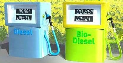 The EU can halve the consumption of first-generation biofuels