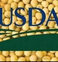 USDA lowered the forecast of world soybean production