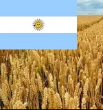 Argentina has imposed a duty on grain exports