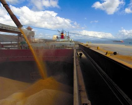 In the current season the country exported 33 million tons of grain