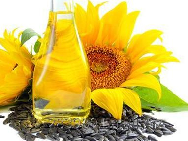 Purchase prices for sunflower growing