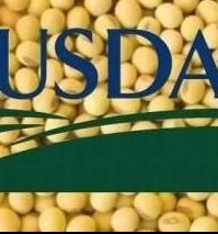 The USDA forecast that soybean production will increase and consumption will decrease