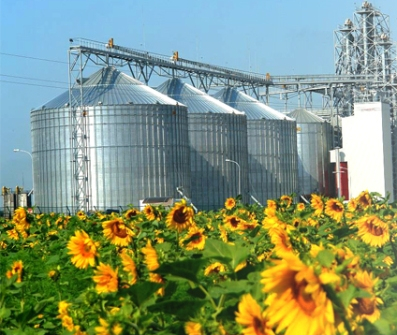 Ukroliyaprom hopes to increase processing volumes oilseeds
