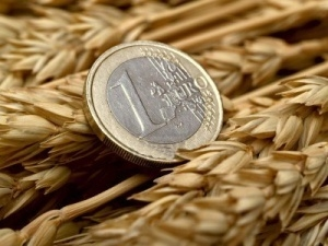 European wheat continues to put pressure on Chicago
