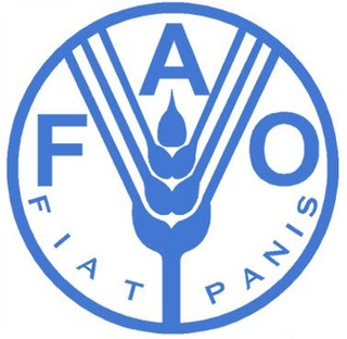 FAO index of food prices in June rose the most over the last four years