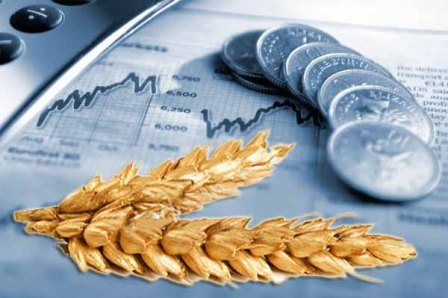 Weekly review of the world grain market