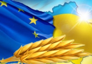 Global wheat prices are falling, but in Ukraine continues to increase