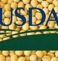 The USDA predicts a reduction in production and ending stocks soybean
