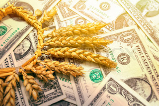 Wheat drops after the speculative leap