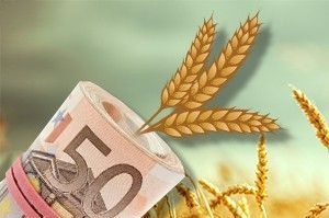 The Ministry of agrarian policy is developing a new system of subsidies for farmers
