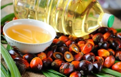 The price of palm oil will support prices for sunflower and soybean oil