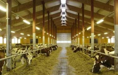 Купить дом в испании для сельского хозяйства