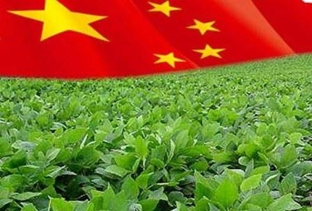 China in 2017/18 MG is importing a record amount of soybeans