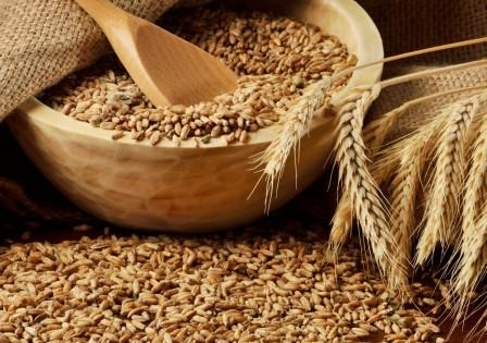 FAO downgraded its forecast for world grain trade in 2016/17 MG to 393 million tons