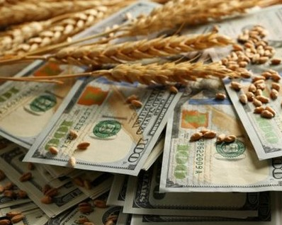 Wheat prices in the US again under the pressure of the weather