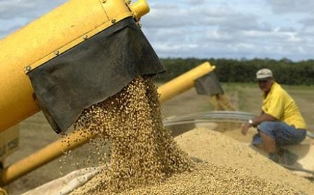 The reduction of soybean crop in Argentina supports the price of Ukrainian soybeans