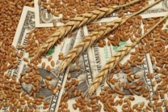 Increasing the price of basic grains under the CPT