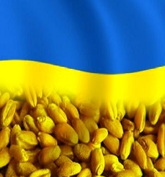 Ukraine in 2018/19 MG exported a record amount of grain
