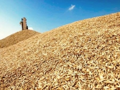 The future yields and prices for domestic barley harvest 2016/17