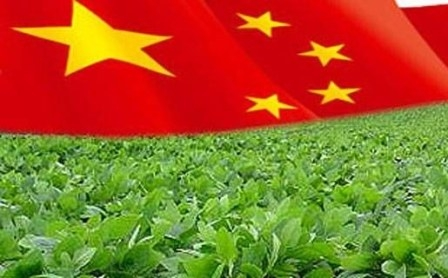 The increase in imports of soybean in China supported the market