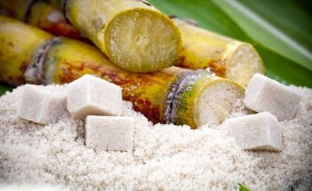 The world price for sugar in 2017 will fall by 7.1%